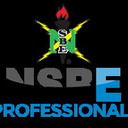 nsbepro_logo_pdc_2016_large_1